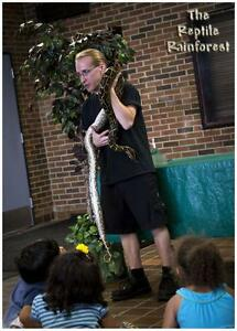 Reptile Rainforest Road Show Kingston Kingston Area image 7