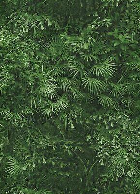 Erismann Tropical Leaf Jungle Wallpaper Leaves Forest Textured Paste Wall Vinyl (Jungle Vinyl Wallpaper)
