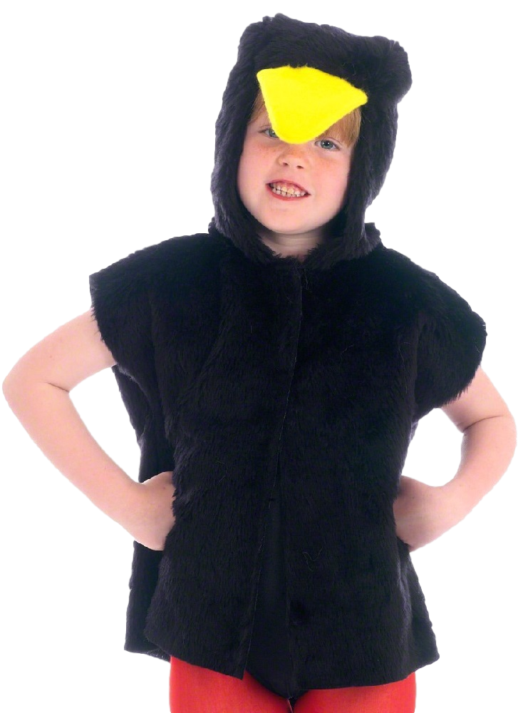 Boys Girls Blackbird Crow Animal Zoo Wild Book Week Fancy Dress Costume Outfit
