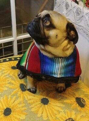 Large Breed Dog Costumes (Dog Poncho Mexican Serape  Pug and similar breeds. Size)