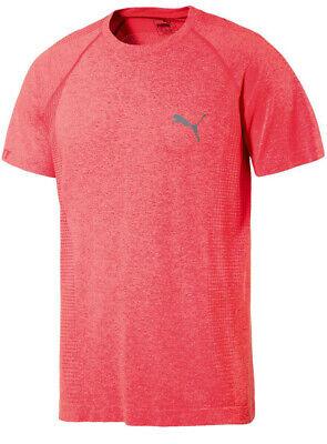 Puma Active Mens evoKnit Basic Fitness Training T-Shirt Top Pink 590632 12 A57E