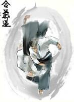 AIKIDO MONTREAL, ADULTE, ET ADOLESCENT MONTREAL AIKIDO