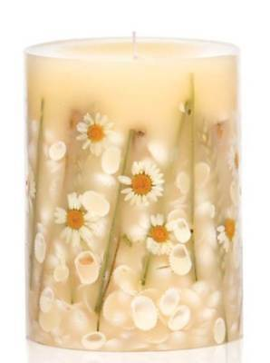 BEACH DAISY Rosy Rings Small 5.5 Inch 120 Hour Pillar Botanical Scented Candle ()