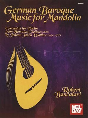 String Instruments Mandolin Tab Music Book