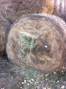 WANTED: Round bales hay to be transported