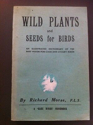 Wild Plants And Seeds For Birds By Richard Morse Foods For Cage & Aviary