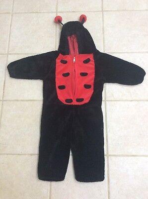 CELEBRATION HALLOWEEN GIRLS BLACK/RED LADYBUG PLUSH COSTUME SIZE CHILD LARGE VGC - Celebration Halloween Costumes