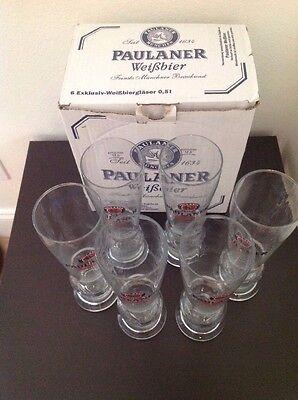 6 NEW PAULANER GERMAN BEER GLASSES 0.5L  2010 CHAMPION RARE