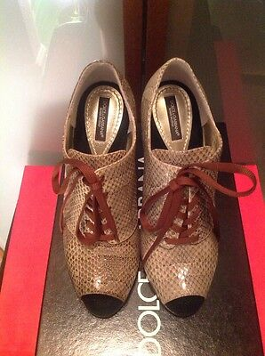 DOLCE & GABBANA WOMANS $ 895.00 100% AYERS SNAKE NWB OPEN TOE OXFORD SHOES SZ.37