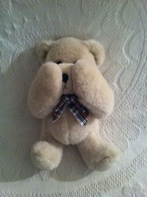 Personalized Gifts and Plush Custom Message Teddy Bear 17' Teddy Bear PG830539X