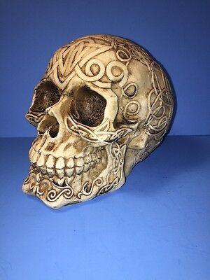 NEW Celtic Owl Knotwork Tribal Human Skull Halloween Figurine Bones Home Decor