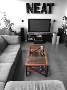 Ipe and tempered glass coffee table