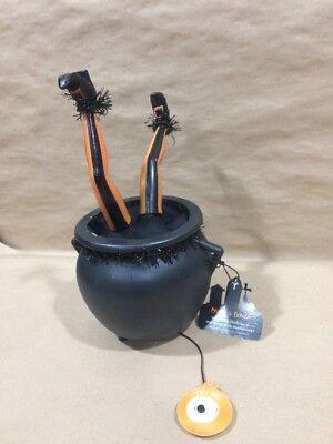 Skull and Bones Animated Witch in Cauldron Motion Sensor Halloween
