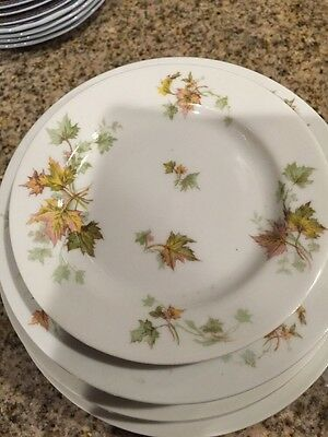 Haviland Limoges France Dining Plates Set 16 Pieces