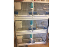 professtional steel breeding bird cages X3