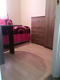 VERY BRIGHT and LOVELY SINGLE ROOM TO RENT SUDBURY HILL & SUDBURY TOWN STATION