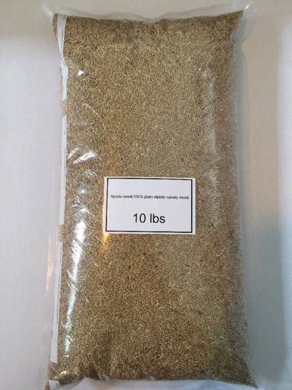 Alpiste Seed Canary Seed (10 Lbs) Fresh Vacuum Sealed Best Deal