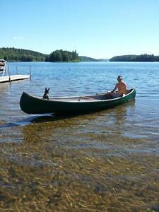 Lac Gagnon Duhamel outaouais/ Laurentides  location chalet plage Gatineau Ottawa / Gatineau Area image 4