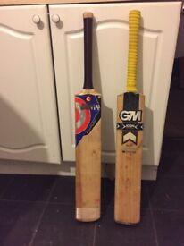 Short handle cricket bat