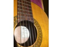 Classical Guitar for Sale ~ WALDEN N740 ~ solid Sitka Spruce top & rosewood fingerboard & back