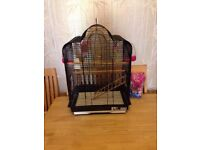 Large Metal Bird Cage Budgie Canary Parakeet Cockatiel Finch + toys + food