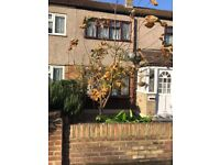 Very Nice and clean 4 bed house to rent