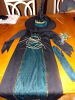 Girl Emerald green Witch Costume with hat (possibly size small)