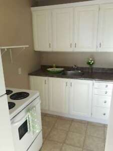 Bachelor, Fort Howe Apartments, Full Kitchen, Fridge/Stove