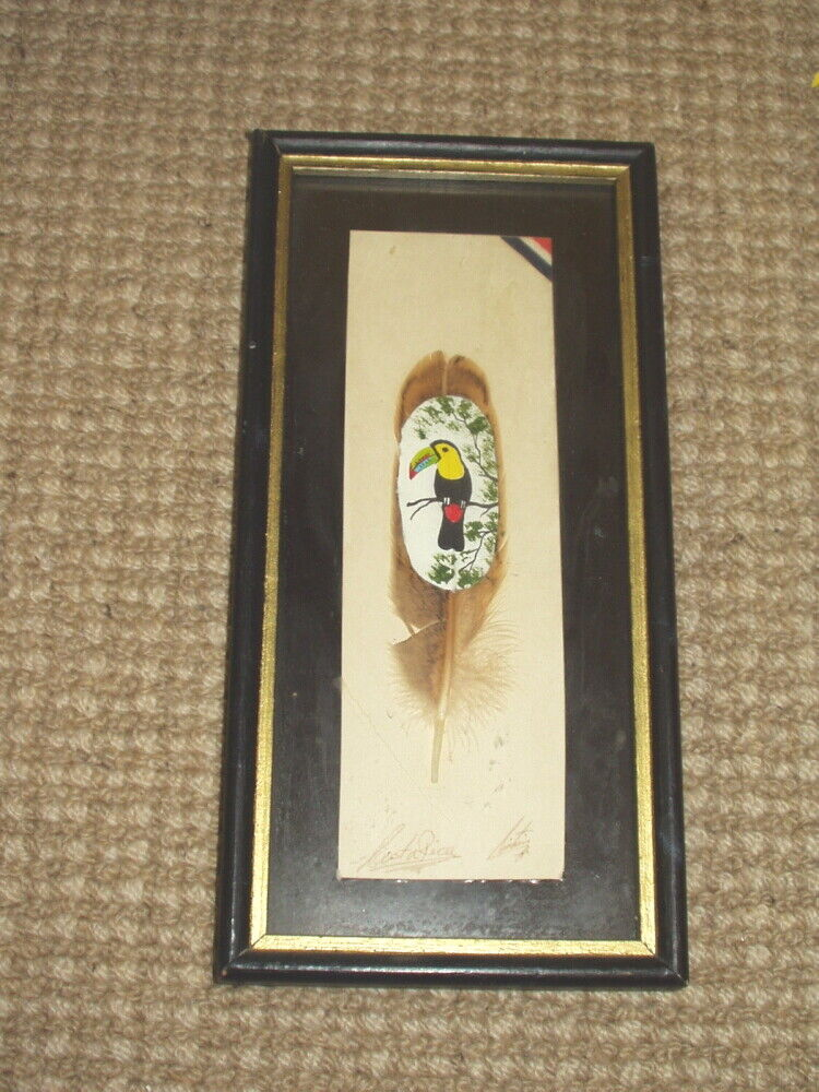 Parrot Toucan COSTA RICA Hand Painted Feather Art - Signed  - $14.00