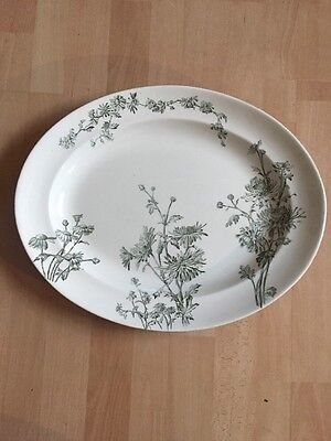 Vintage Antique Chrysanthemum J C And Sons No 21391 Extra Large Serving Plate