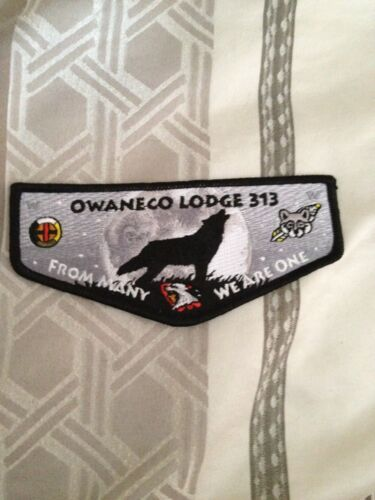 Owaneco Lodge 313 - 15th Anniversary OA flap
