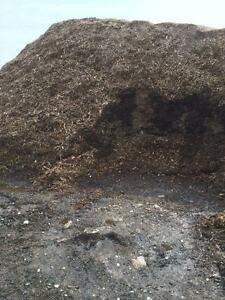 Natural Harwood Mulch Stratford Kitchener Area image 2