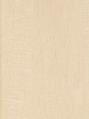 Exotic Curly Maple Tiger Medium Figured Wood Veneer Paper Back 2 X 4 24 X 48