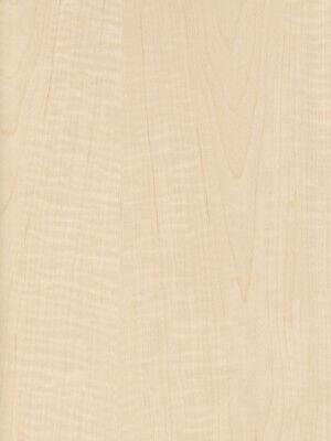 Exotic Curly Maple Tiger Medium Figured Wood Veneer Paper Back 2' X 4' 24