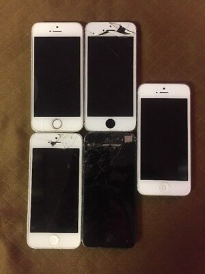 Apple iPhone 5s (5) Phones For