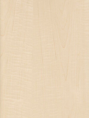 Exotic Curly Maple Tiger Medium Figured Wood Veneer Paper Back 2 X 8 24 X 96