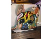 French Bull Dog Colourful Canvas Art 75cm x 75cm