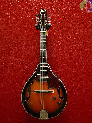 Ibanez M510E Acoustic Electric Mandolin, Brown Sunburst, Free Shipping USA!