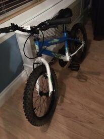 Boy's bike