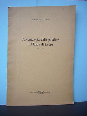 PALEONTOLOGIA DELLE PALAFITTE DEL LAGO DI LEDRO_TRENTO_VALLE DEL CHIESE_TRENTINO