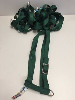 "Lot Of 7 Coastal Pet 36"" Adjustable Nylon Dog Harness Green NWT Made In USA"