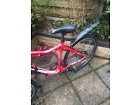 Red mountain bike for sale.
