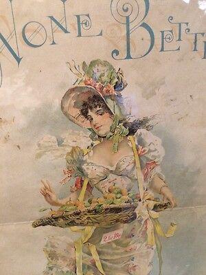 Rare c 1890s Hirzel - Feltmann co Pretty lady litho sign fruit basket importers?