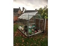 Glass greenhouse 98x74inches