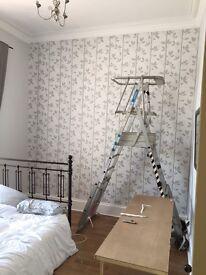 Zarges workplatform ladder (pro)