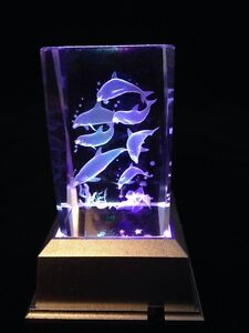 Dolphins-  3D laser crystal block with LED base