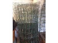 Green wire fencing suitable for growing peas, beans etc along