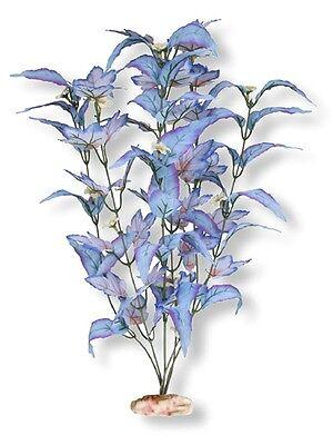 Blue Ribbon ColorBurst Florals Flowering Broad Leaf Cluster Aquarium Plant Med