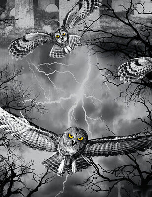 Halloween Fabric, By The Yard, Owls in Graveyard, WICKED-7023, TheFabricEdge