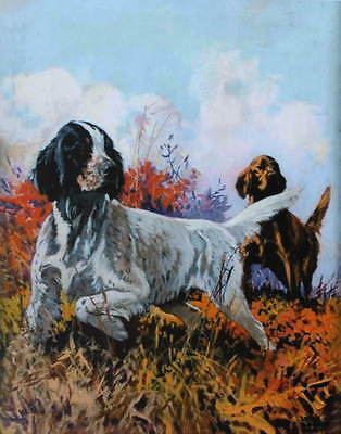 vintage art Lynn Bogue Hunt Hunting Bird Dogs